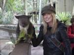 Lanaea and Koala