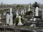 Waverly Cemetery #1