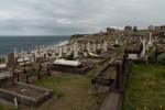 Waverly Cemetery #2